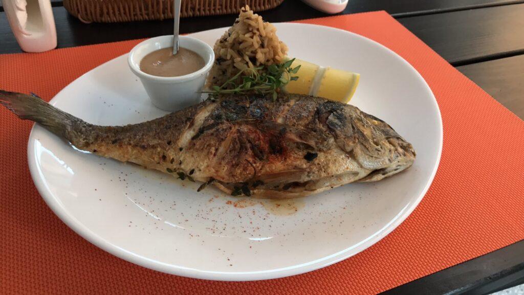 Рыбка Дорадо